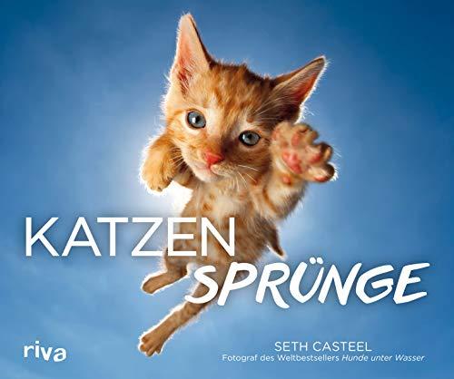 Katzen-Geschenkbuch #3