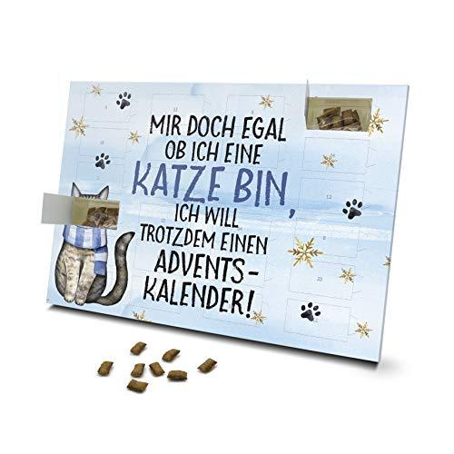 printplanet - Katzen Adventskalender - Layout Mir doch...