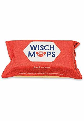 Wisch-Mops