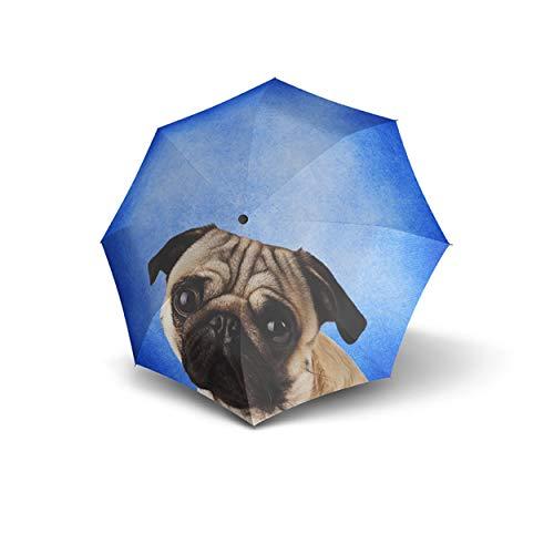 Mops-Regenschirm