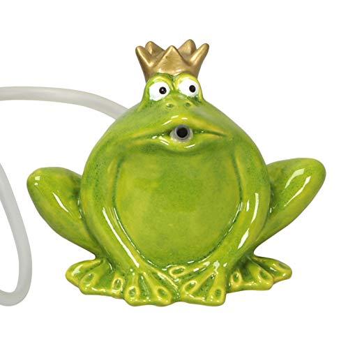 Froschkönig-Wasserspeier mit Pumpe