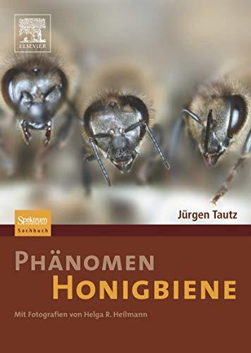 'Phänomen Honigbiene'