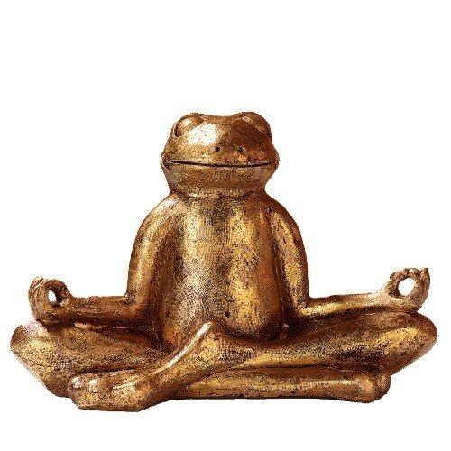 Meditations-Frosch