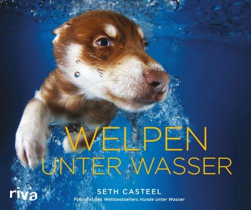 Geschenkbuch: Welpen unter Wasser