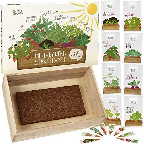 Saatgut Anzuchtset mit Holzkiste und 8 Sorten Pflanzen...