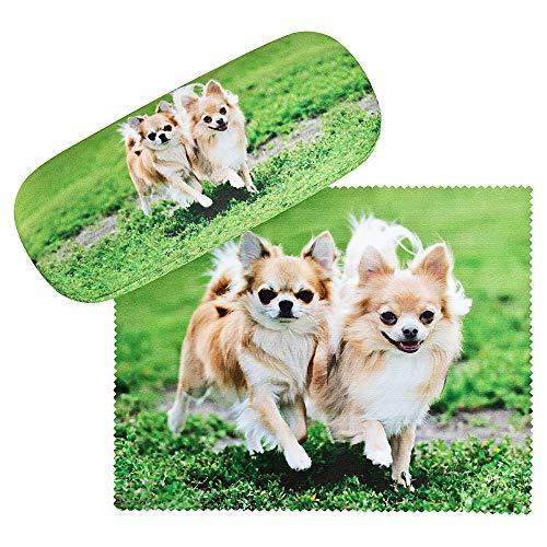 Chihuahua-Brillenetui
