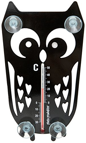 Fenster-Thermometer