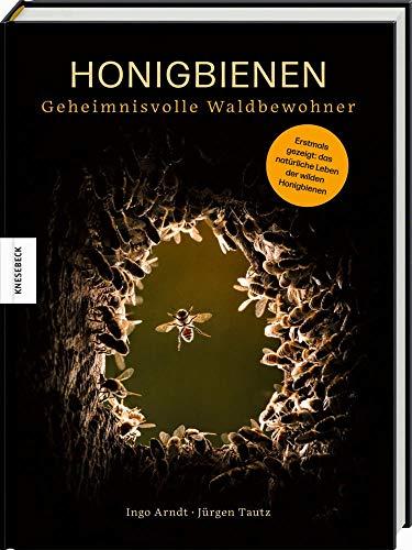 'Honigbienen - geheimnisvolle Waldbewohner'