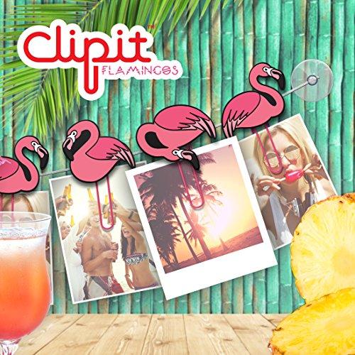 Flamingo-Fotoleine